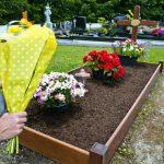 240937-675x450-green-burial